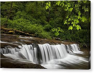 Cascades Along A Creek Canvas Print by Andrew Soundarajan