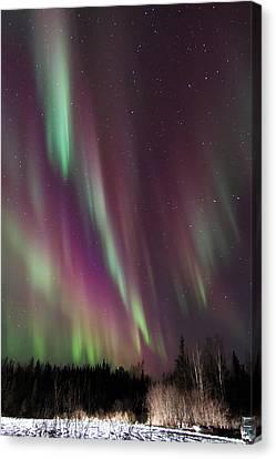 Cascading Aurora Canvas Print