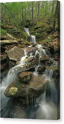 State Of Arkansas Canvas Print - Cascading Creek Mulberry River Arkansas by Tim Fitzharris