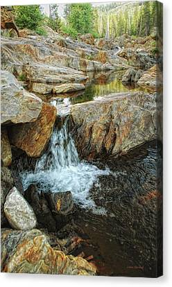 Cascading Downward Canvas Print