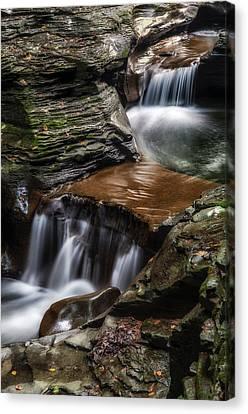 Cascading Glen Canvas Print by Mark Papke
