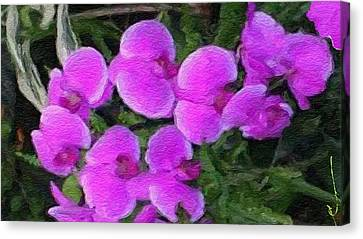 Cascading Purple Orcids Canvas Print by Anthony Fishburne