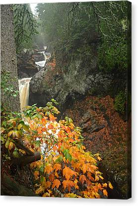 Canvas Print featuring the photograph Cascading Steps by James Peterson