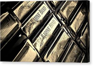 Case Of Harmonicas  Canvas Print by Chris Berry