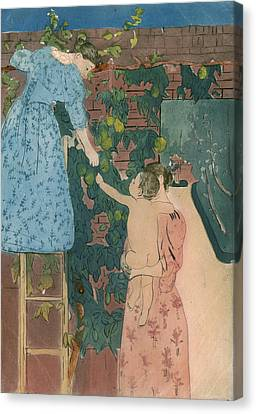 Cassatt Fruit, C1895 Canvas Print by Granger