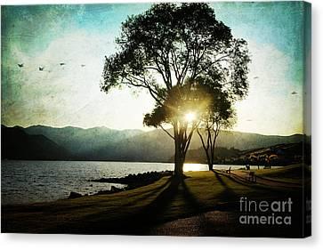 Lake Chelan Canvas Print - Casting Shadows by Sylvia Cook