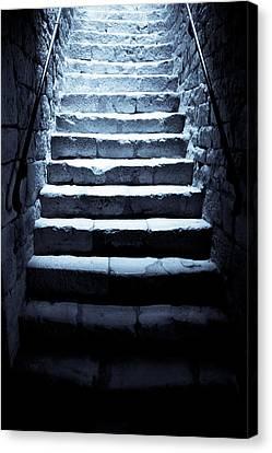 Cellar Canvas Print - Castle Dungeon Steps by Georgia Fowler