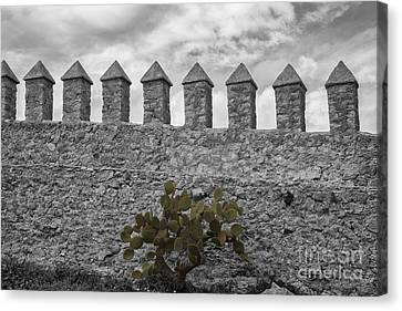Castle Wall Canvas Print