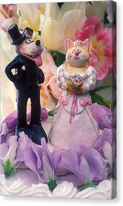 Cat And Dog Bride And Groom Canvas Print by Garry Gay
