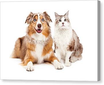 Cat And Happy Dog Together Canvas Print by Susan Schmitz