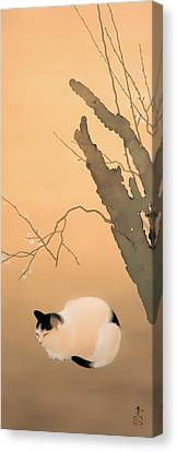 Cat And Plum Blossoms Canvas Print by Mountain Dreams