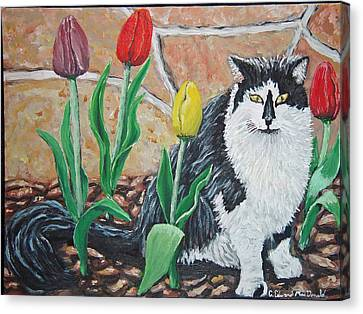 Cat By The Tulips  Canvas Print