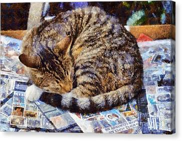 Cat Collecting Stamps Canvas Print