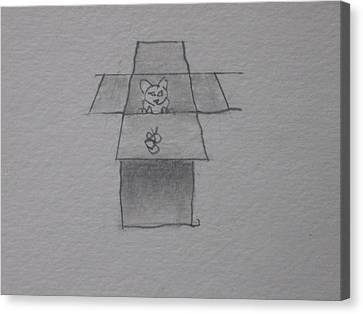 Cat In A Box Canvas Print