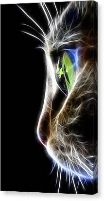 Macros Canvas Print - Cat Macro  by Mark Ashkenazi