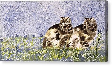 Cat Mint Wc On Paper Canvas Print