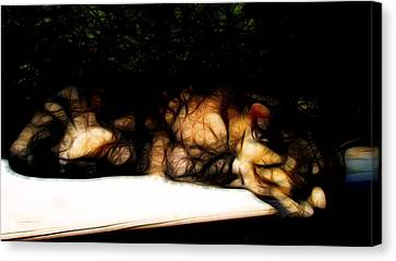Cat Nap 1 Canvas Print by William Horden