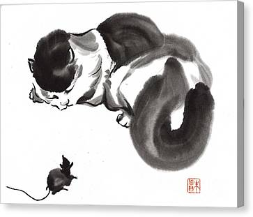 Cat Nap Canvas Print by Yolanda Koh