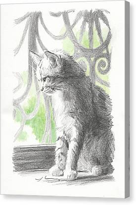 Cat Near Screen Door Watercolor Portrait Canvas Print by Mike Theuer