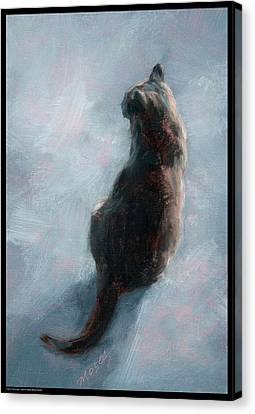 Cat On Concrete Canvas Print by Diana Moses Botkin