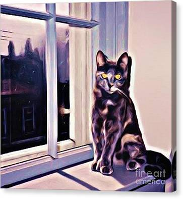 Cat On Window Sill Canvas Print by John Malone