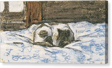 Sleeping Cat Canvas Print - Cat Sleeping On A Bed by Claude Monet