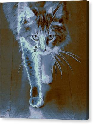 Cat Walking Canvas Print by Ben and Raisa Gertsberg