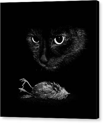 Cat With A Dead Bird Canvas Print by Cordelia Molloy