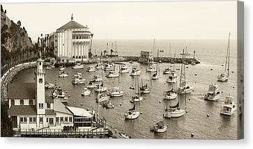 Catalina Island. Avalon Canvas Print