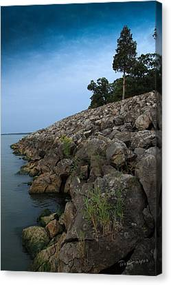 Catawba Point Shoreline Canvas Print by Terri Harper