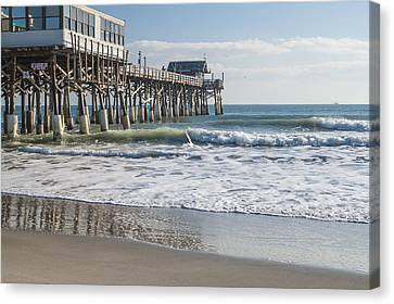Catch Of The Day Canvas Print by Brian Harig