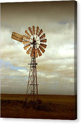 Farm Canvas Print - Catch The Wind by Holly Kempe