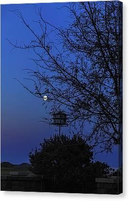 Catching Moonlight Canvas Print