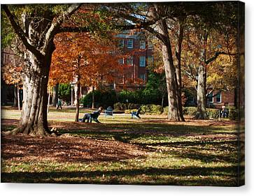 Catching Rays - Davidson College Canvas Print by Paulette B Wright