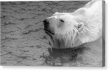 Snow Drifts Canvas Print - Catching The Scent by Doug Comeau