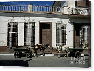 Horse And Cart Canvas Print - Horses Catching Up In Cuba by James Brunker