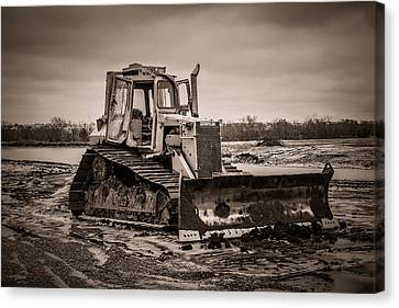 Caterpillar Canvas Print by Doug Long