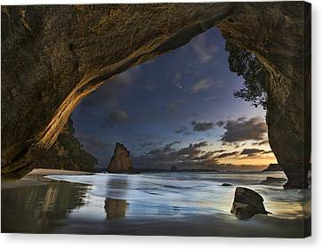 Cathedral Cove Canvas Print by Yan Zhang