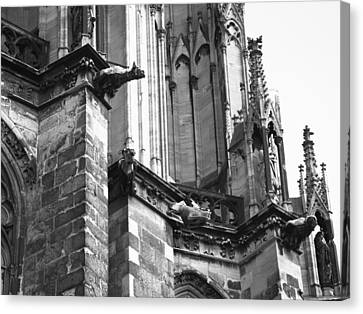 Cathedral Gargoyle 04 Canvas Print by Teresa Mucha
