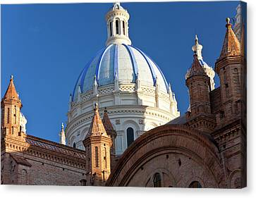 Cathedral Of The Immaculate Conception Canvas Print by Peter Adams