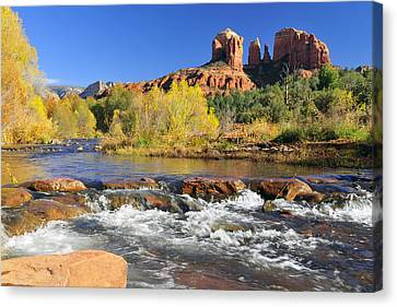 Cathedral Rock From Rock Crossing Canvas Print by Dan Myers