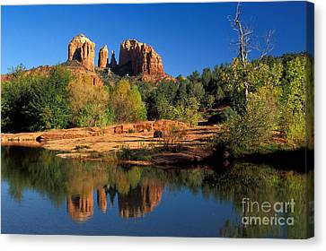 Cathedral Rock Canvas Print by Mark Newman