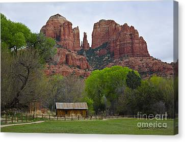 Cathedral Rock V Canvas Print by Dave Gordon