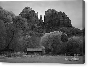 Cathedral Rock Vii Bw Canvas Print by David Gordon