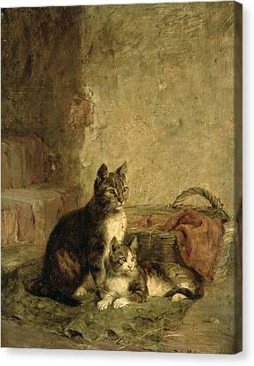 Cats, 1883 Oil On Canvas Canvas Print