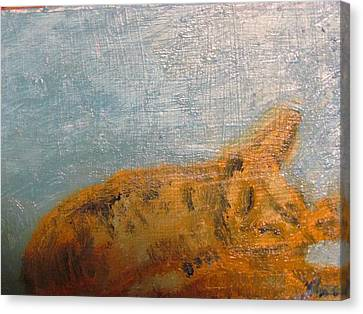 Cat's Alive Canvas Print by Shea Holliman