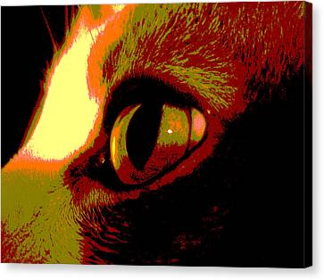 Cat's Eye Abstract  Canvas Print by Ann Powell