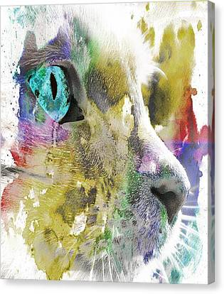 Cat's Eye Abstract Canvas Print
