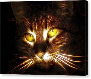 Cat's Eyes - Fractal Canvas Print by Lilia D