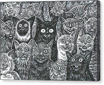 Canvas Print featuring the mixed media Cats Eyes by Giovanni Caputo